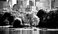 Central Park Tranquility 1/200